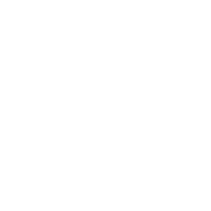 Geeks will be your Boss.