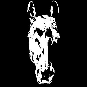 Süßer Pinker Pferdekopf - Stylischer Kopf Pferd