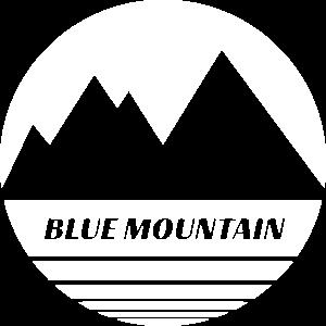 BM 400