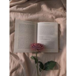 Rosen Aufdruck