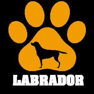 Labrador Hund Pfote Hundehalter Hunderasse