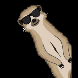 Erdmännchen Sonnenbrille Lustig Geschenk tiere