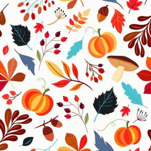 Herbst Pilze Kürbis Eicheln