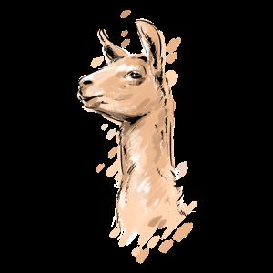 Lama Alpaka Portrait Llama Lamaliebhaber