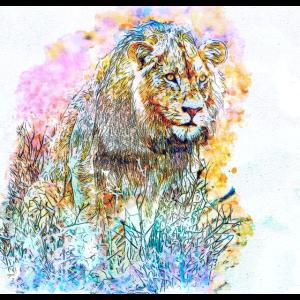 Löwenaquarell