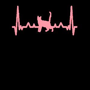 Herzschlag Liebe für Katze