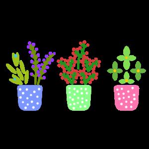 Bunte Blumen in der Blumentopf