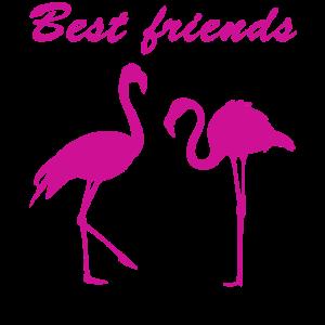 Beste Freunde Geschenk Flamingo Freundschafts