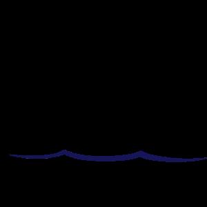Ostsee mit fliegenden Möwen und Wellen