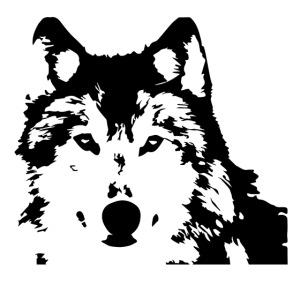 Wolf - Loup - Husky