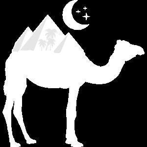 Kamel Pyramide Orient
