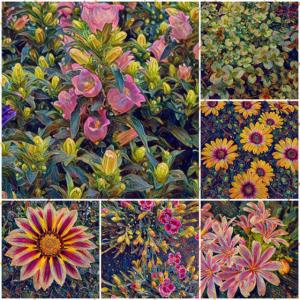 Blumen-Collage Blume Blüte - kreativ