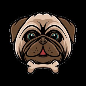 Kleiner Suesser Hund Little cute pug dog