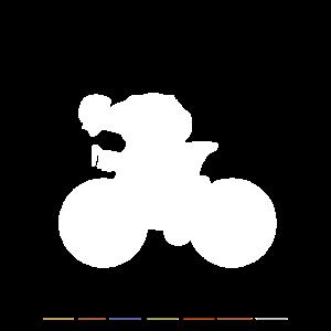 Rennrad Silhouette