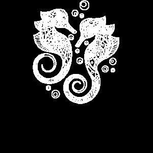 Seepferdchen - Seepferdchen