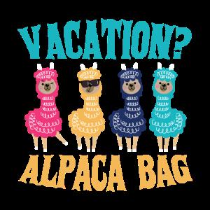 Bunte Alpaka Crew Ferien