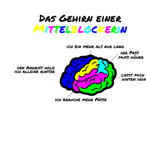 Gehirn einer Mittelblockerin