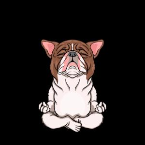 Hund im Schneidersitz süßes lustiges Yoga Geschenk