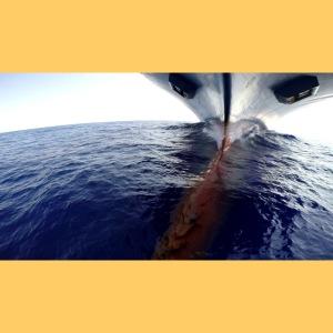 Frachtschiff Containerschiff