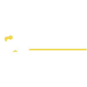 Dodo Airlines