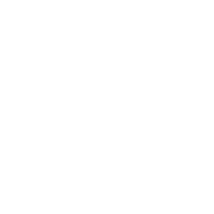 Hundetrainer