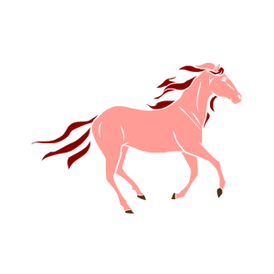 Pferd Brauner Falbe Fohlen Pony Hengst Kaltblut