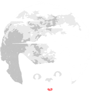 Katze stört Vollmond - verursacht Mondfinsternis