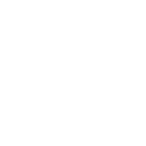 100% original diplom ingenieur Maschinenbau