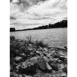 Rhein - black and white