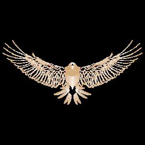 Falke spezielles einzigartiges Design