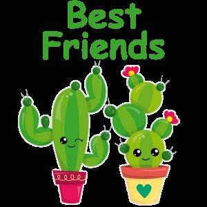 Beste Freunde Freundschafts Geschenk Kaktus