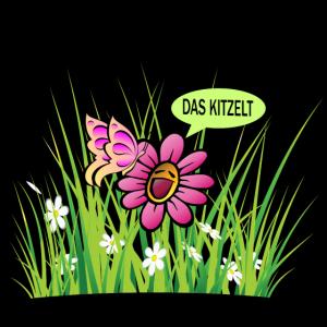 Sommer, Blume