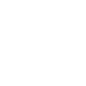 Hobby Horse Steckenpferd Hobbyhorsing Geschenk