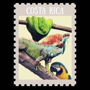 Erinnerungen aus Costa Rica