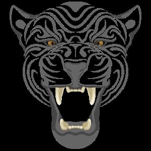 Katze Tiger Stubentiger
