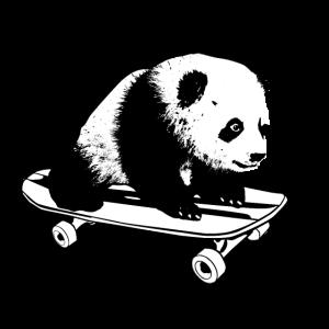 Panda fährt auf Skateboard Spaß Kinder Design