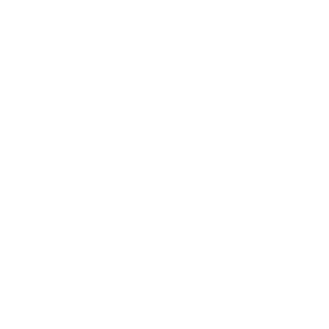 System Relevant