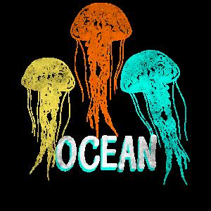 Quallen Ozean