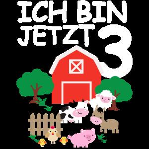 3. Geburtstag Bauernhof und Tiere