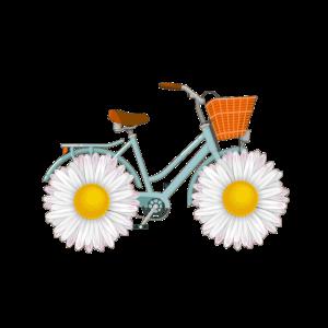 Fahrrad Gänseblümchen Hippie Alternativ Umwelt Fun