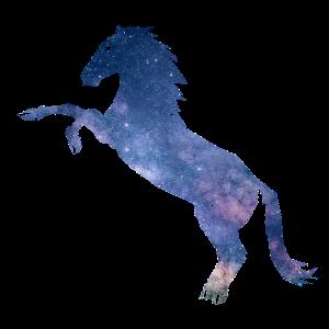 Galaxienpferd