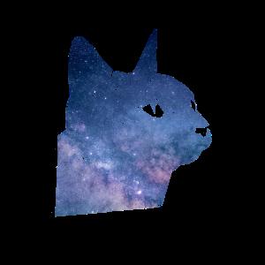 Galaxie Katze