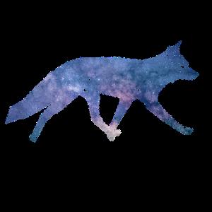 Galaxie Fuchs