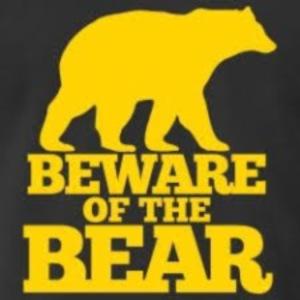 beware of the bear