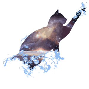 Universe Galaxy Fantasy Cat