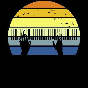 Piano Hände auf das Klavier Pianist Klavierspieler