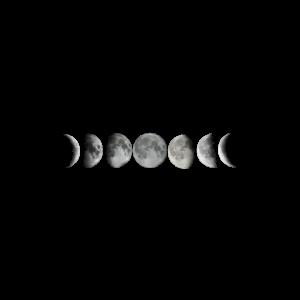 Mond Design