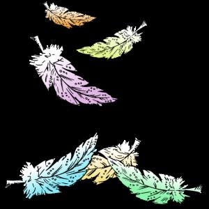 farbige Federn