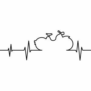 Simson SR1 SR2 EKG