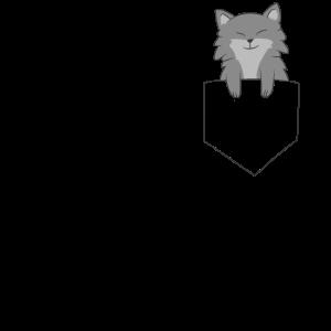 Wolf in der Tasche Süßer Wolf